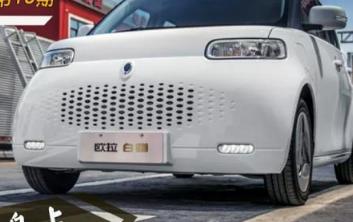 本周六欧拉R2正式公布了其新车命名欧拉白猫